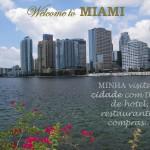 Resumão Miami